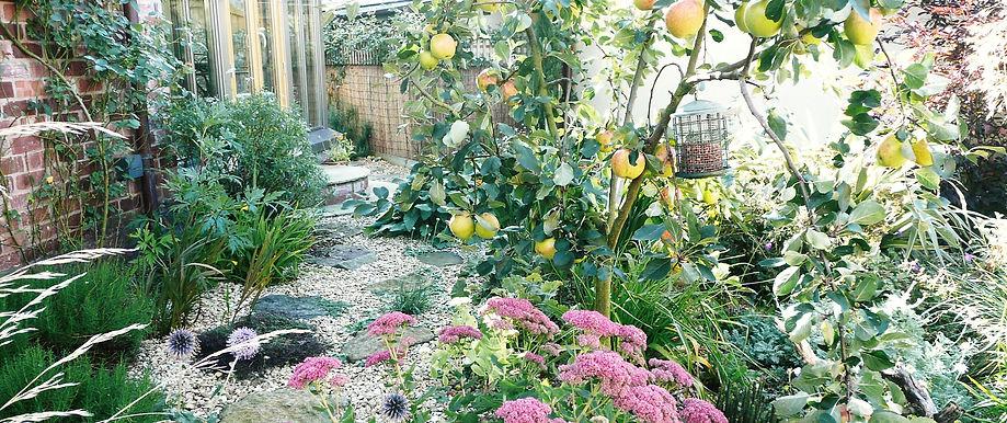 Small gravel and rock garden