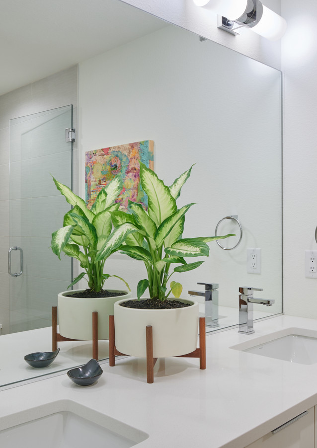 master bedroom en suite bath with frameless shower, water closet and dual vanity