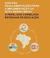 Guia de regulamentação.png