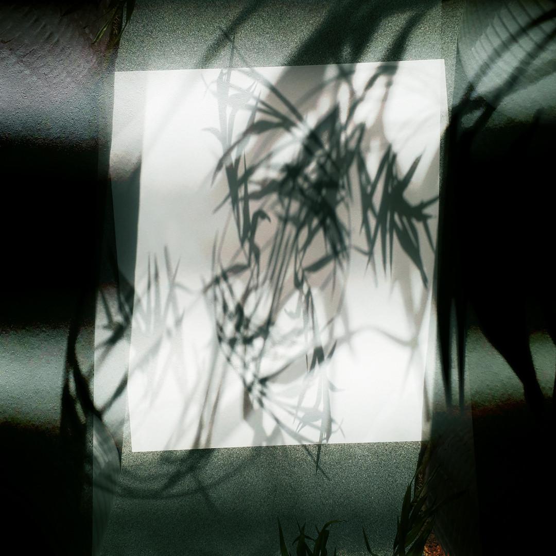 PHNTM008 - Dylan Henner - Stormbird Brot