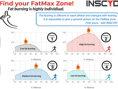 FatMax, What is it and how do you train it?