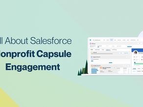 How Nonprofits Benefit from Salesforce and Capsule Services