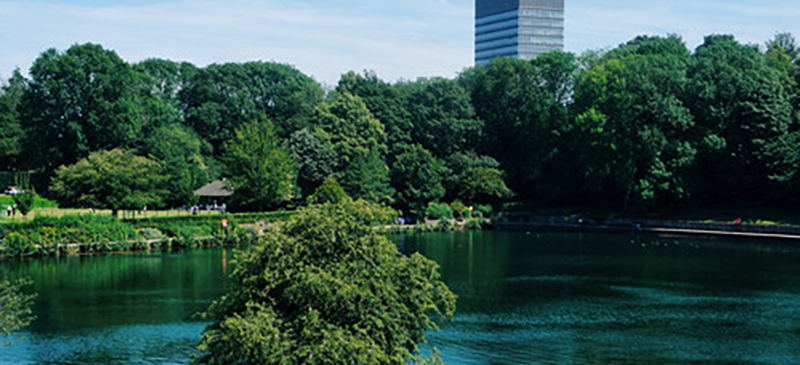 Park and Pond with Arts Tower View (800x
