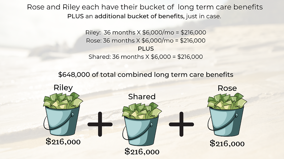 Copy of Riley and Rose chose to a modified traditional long term care insurance policy.png