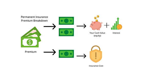 Insurance basics 3 dollars (2).png