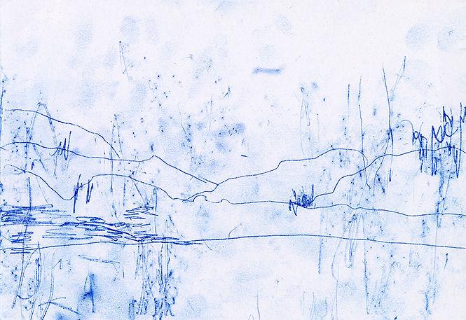 blu5.jpg