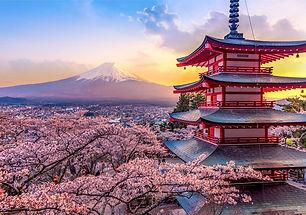 japon - voyage.jpg