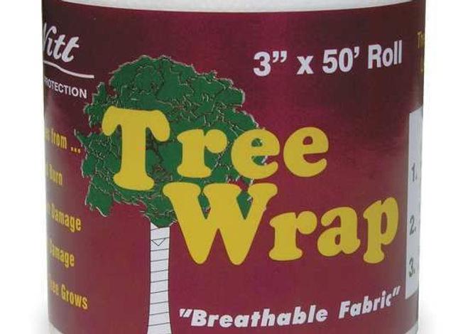 Tree Wrap, DeWitt.jpg