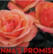 Rose - Anna's Promise.jpg