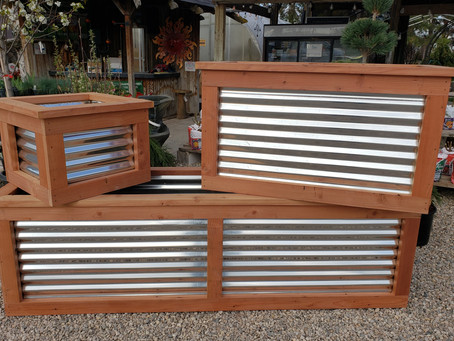Garden Boxes are now available...