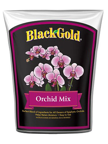 Black Gold Orchid Mix.jpg