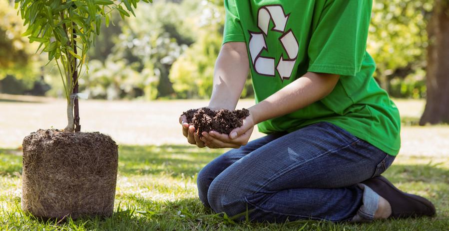 Gardener Planting Tree