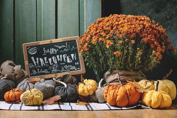 Mums, Pumpkins, and Halloween.jpg