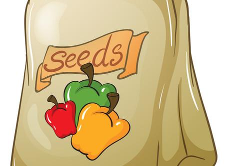 Garden Seeds  50% off retail!