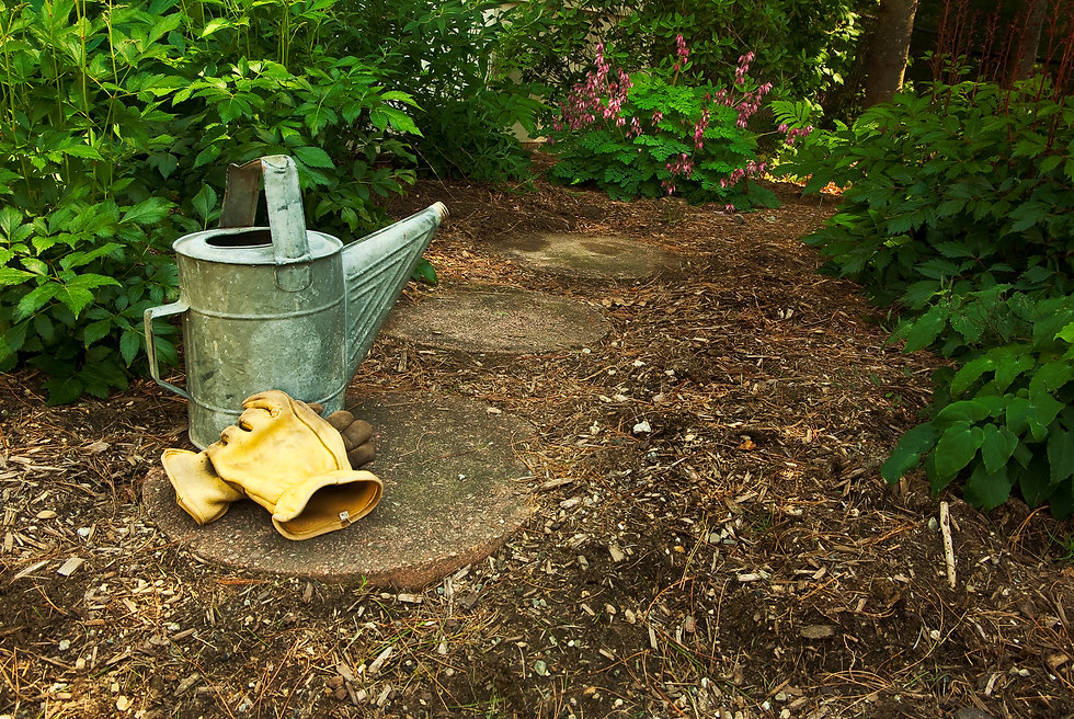 Garden Path with Watering Can.jpg