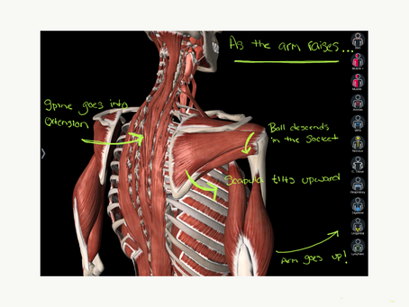 Shoulder Pain-- It's Complicated.