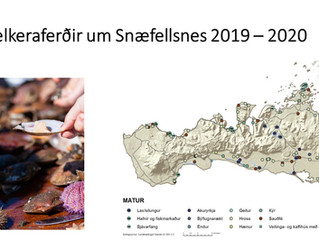 Sælkeraferðir á Snæfellsnesi og Matarklasi Snæfellsness