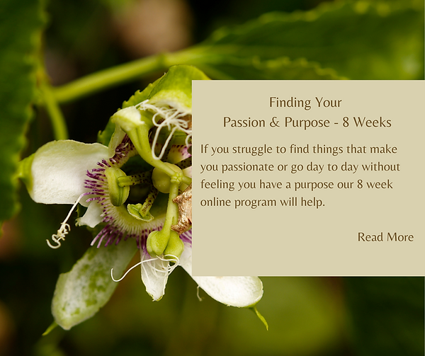 Finding Your Passion & Purpose - 8 Weeks