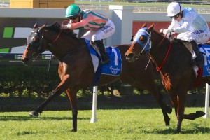 Get On The Grange At The Taree Cup
