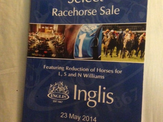 Melbourne Select Racehorse Sale