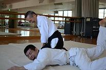 Aikido Shikoku Matsuyama Aishinkan Tanimoto sensei