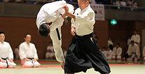 Ando sensei Yoshinkan Aikido