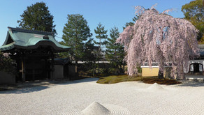 Le temple Kodai-ji 高台寺 pour l'empereur Toyotomi Hideyoshi