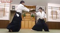 aikido riyji shirakawa sendaï