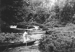 Gert guiding a canoe through Puyo River rapids.jpg