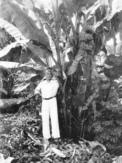 Werner under the first bananas ripening on the new land.jpg