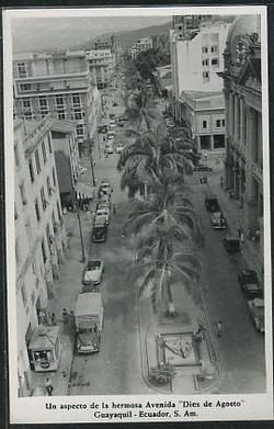 Guayaquil -- Un aspecto de la hermosa Avenida Diez de Agosto.jpg