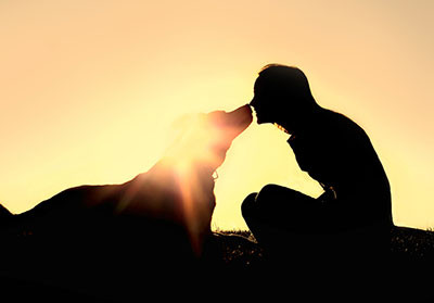 Pet Grief Support Opportunities