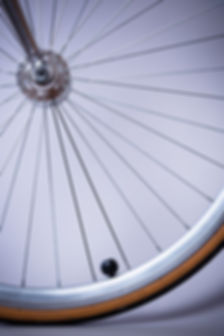 Bike Wheel.jpeg