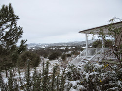 front garden in snow