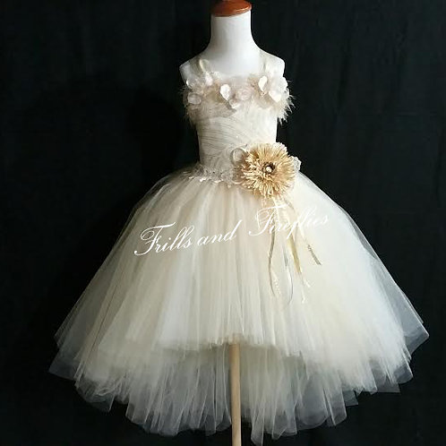 Ivory and Beige Princess Fairy Flower Girl Dress,  Sizes 1t up to 12