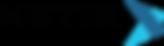 NETIX_logo.png
