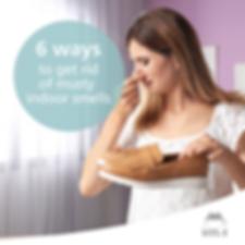 6 Ways To Get Rid of Musty Indoor Smells