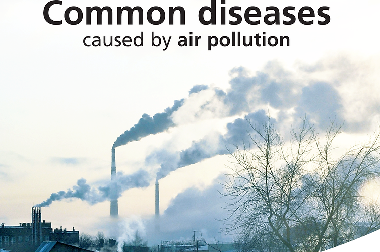 Common Diseases Caused By Air Pollution.