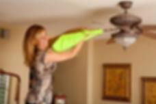 cleaning-fan.jpg