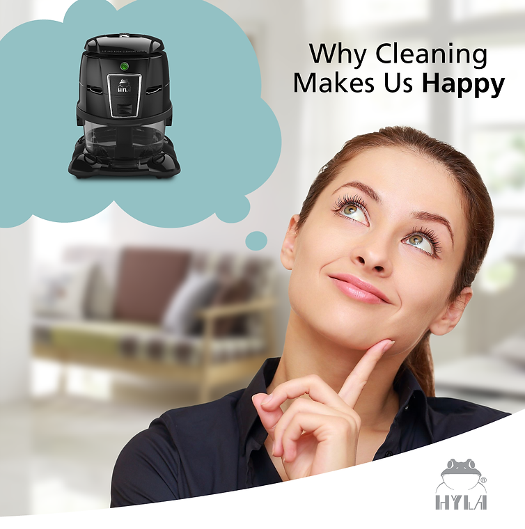 Why Cleaning Make Me Happy