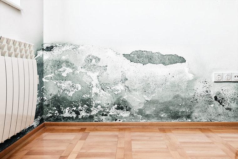 Musty surface.jpg