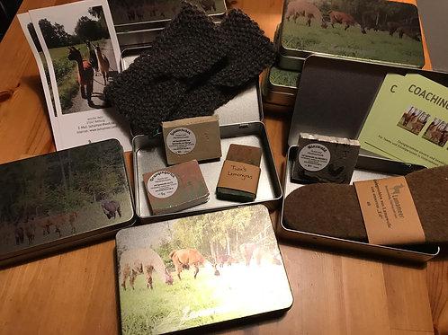 Lamameer-Box für Gutscheine und Geschenke