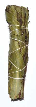 "4"" Eucalyptus Citridora smudge stick"