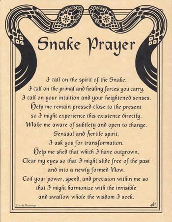 Snake Prayer poster