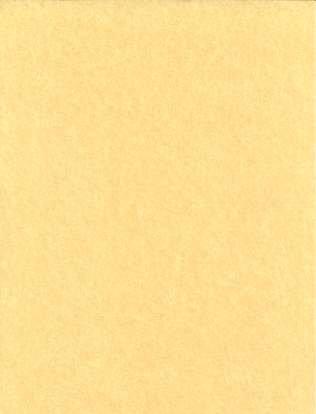 """Light Parchment Paper 25 Pack  (8 1/2"""" x 11"""")"""