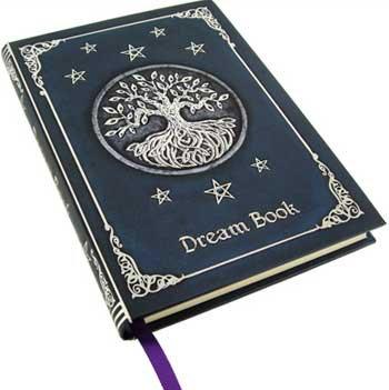 Dream journal (hc)