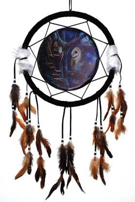 "13"" Owl & Fairy dream catcher"