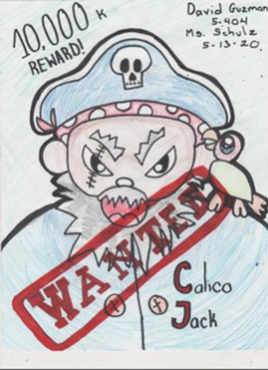 Pirate Portrait - Grade 5