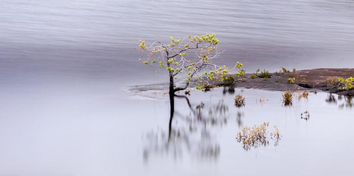 Loch Maree Tranquility