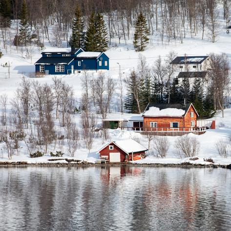 Colour & Snow (1/2)